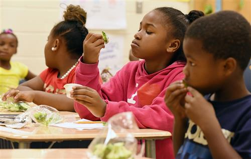 African American third grade girl looks at a broccoli spear before eating it.